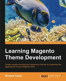 learning magento theme dev