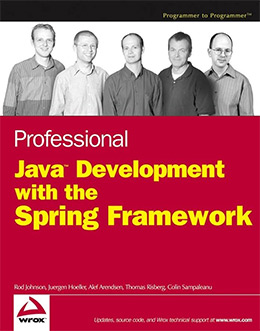 professional java dev spring