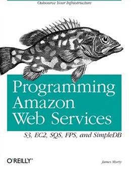 programming aws