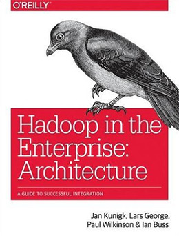 hadoop in enterprise