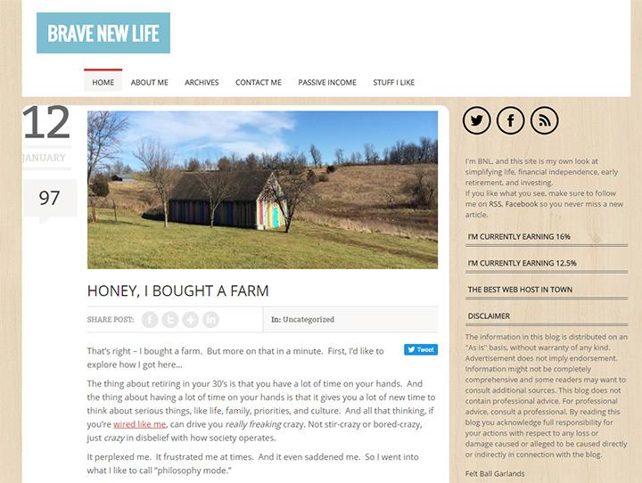 brave new life blog