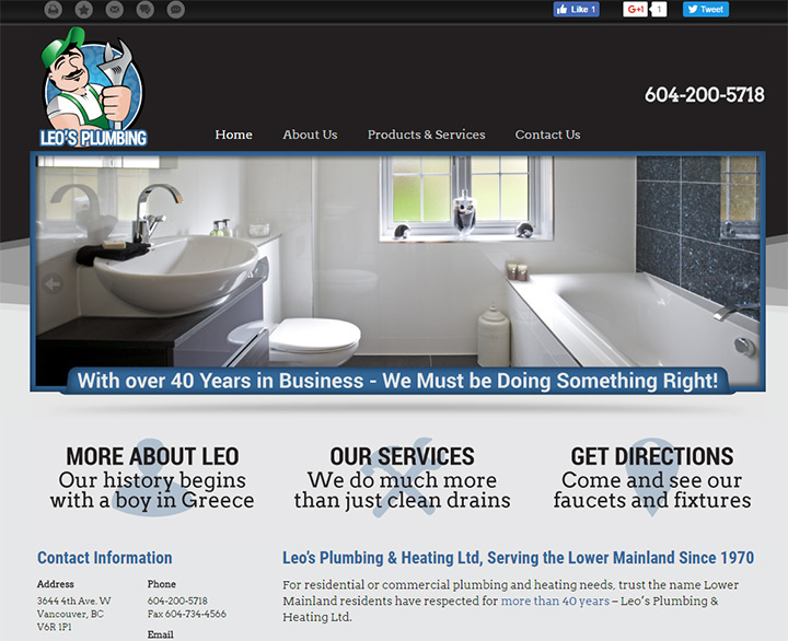 leos plumbing website
