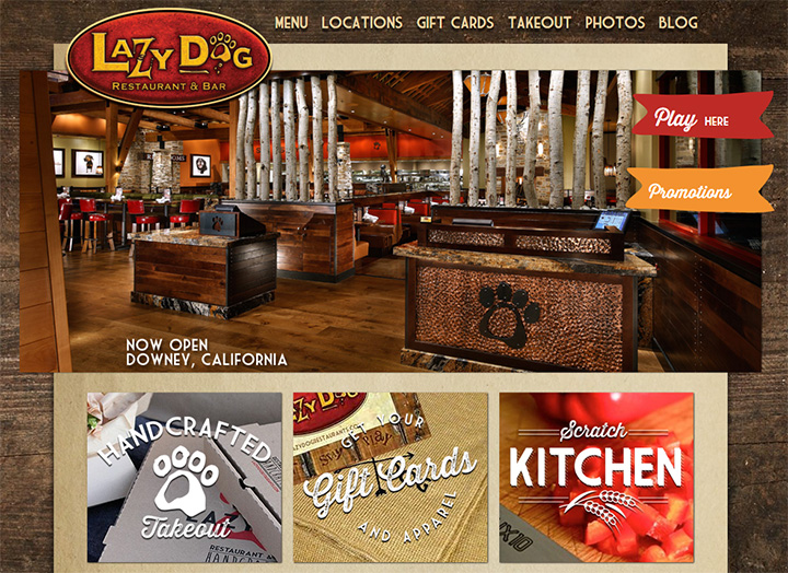 lazy dog website