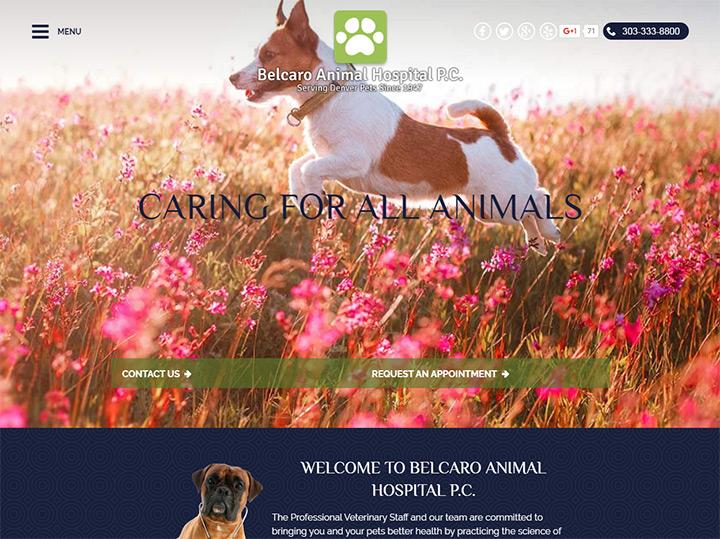 belcaro animal hospital