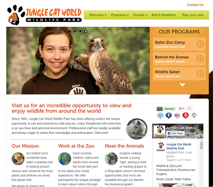 jungle cat zoo