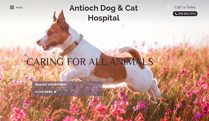 antioch dog cat