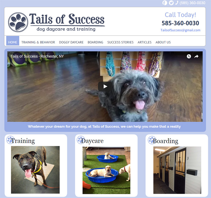 tails of success