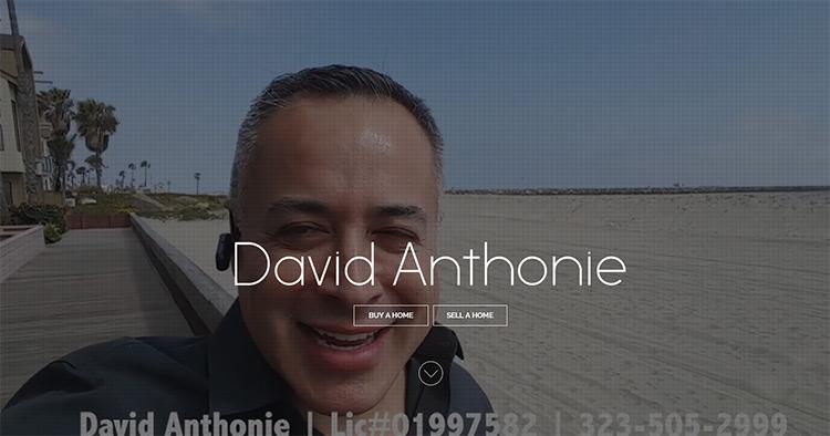 david anthonie