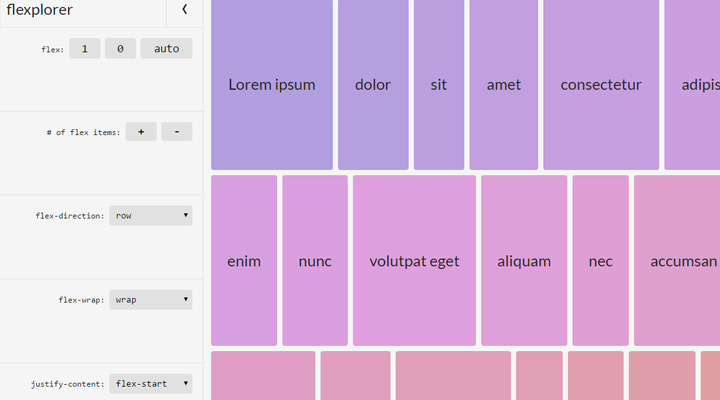flexplorer webapp screenshot