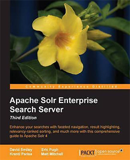 apache solr4 enterprise
