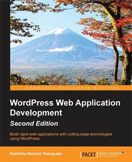 wp web app development