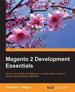 magento2 dev essentials