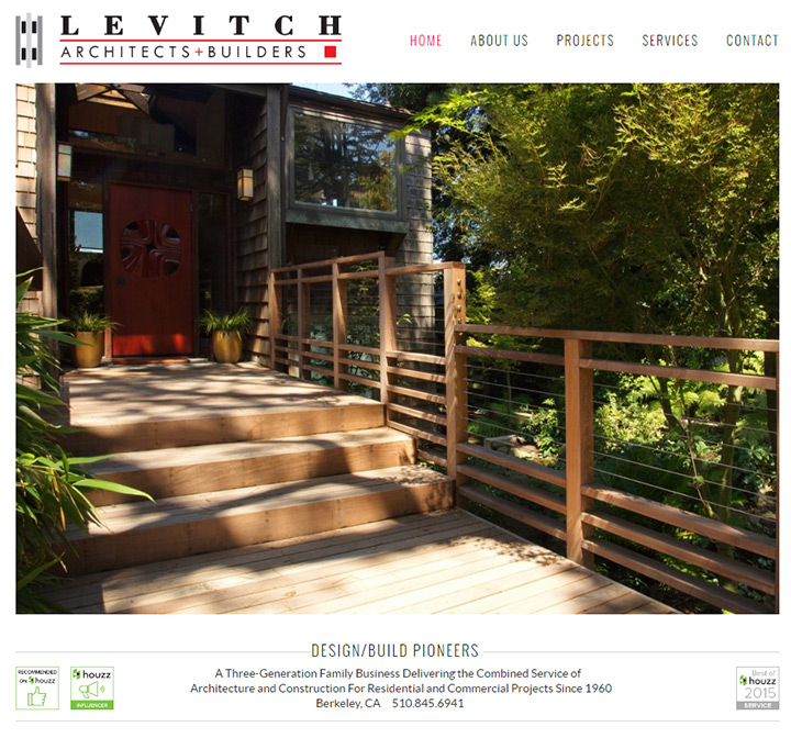 levitch associates homepage