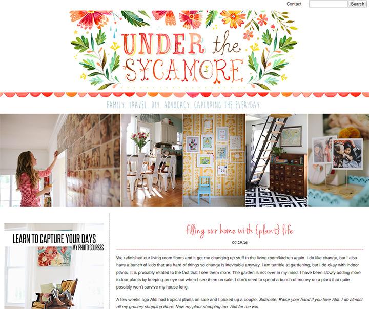 under sycamore blog