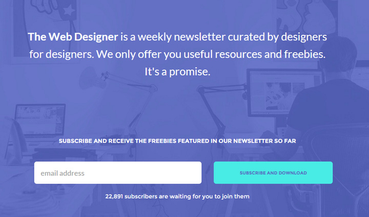 the web designer newsletter