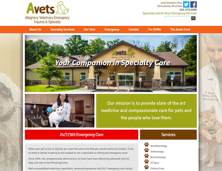 100 Veterinarian Website Designs For Inspiration
