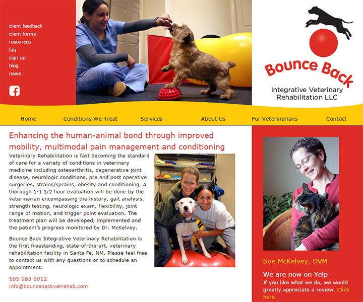 bounce back vet rehab