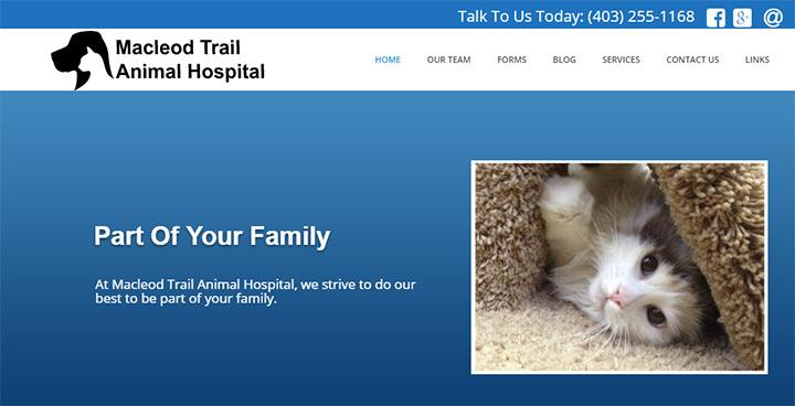 macleod animal hospital