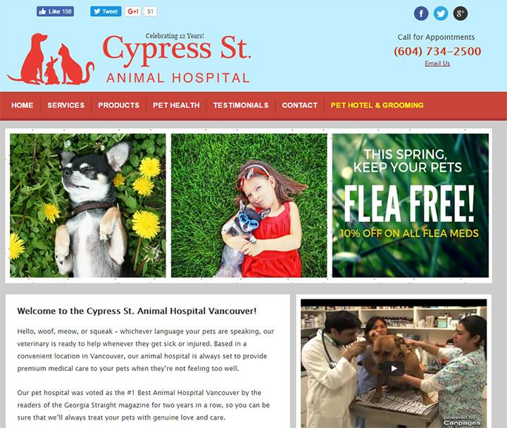 cypress st animal hospital