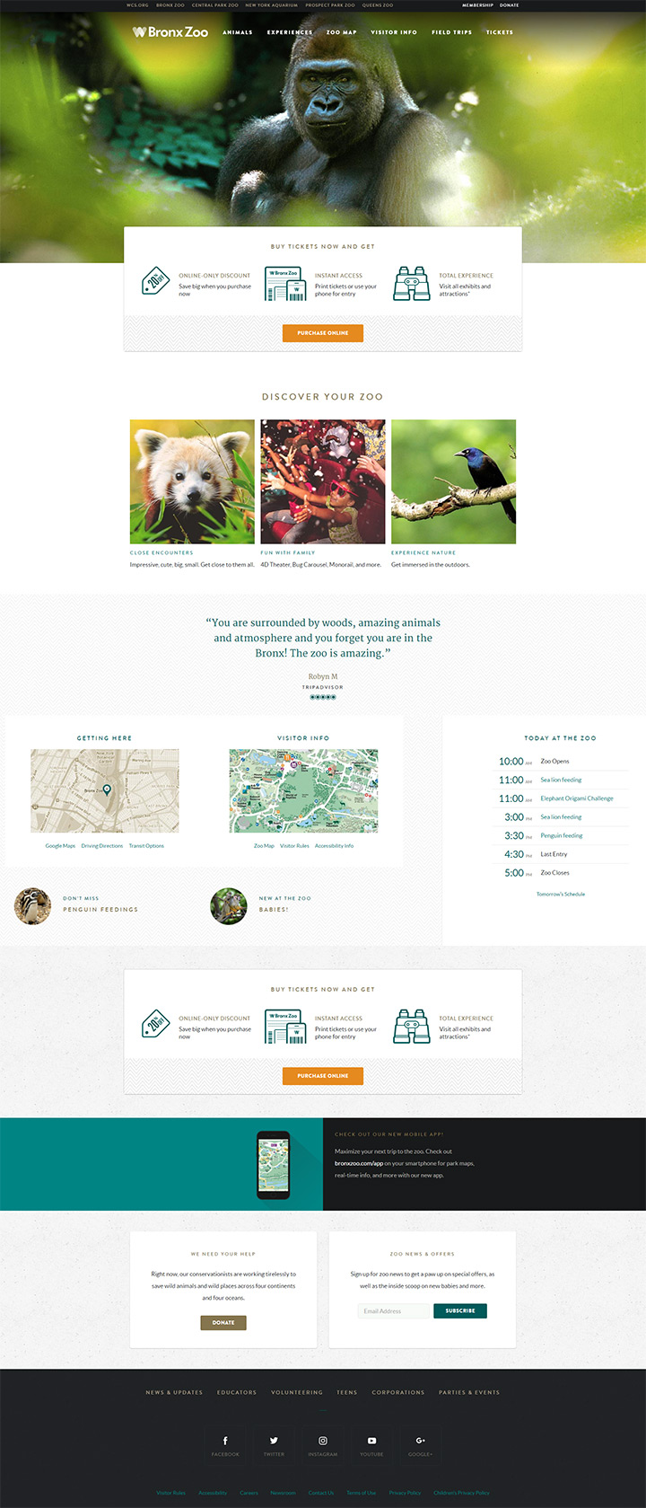 bronx zoo website