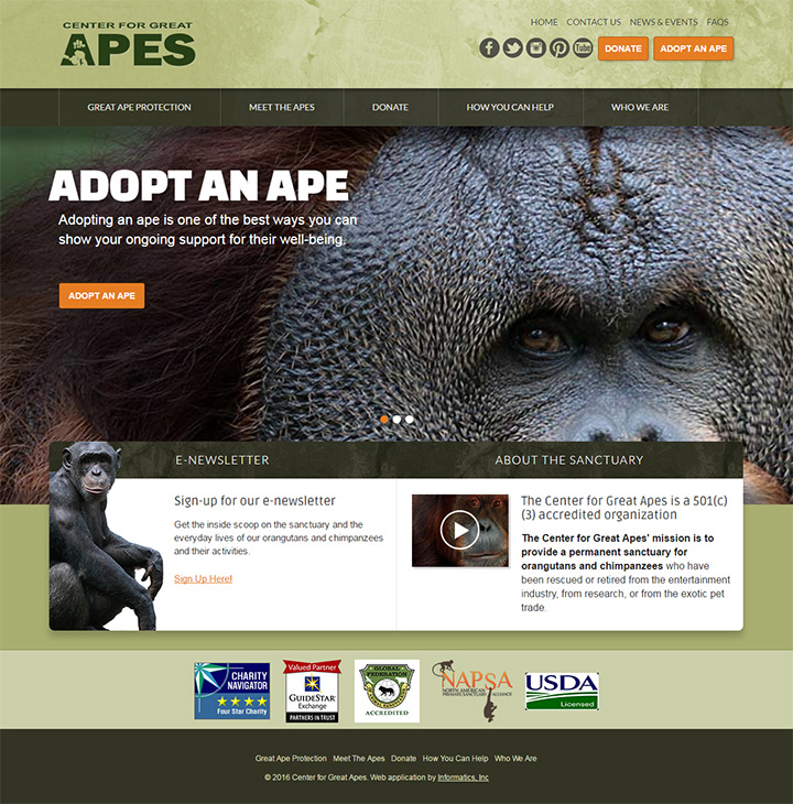 great ape sanctuary