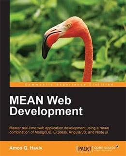 mean web development book