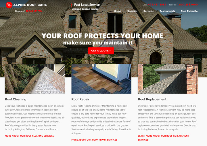 alpine roof care