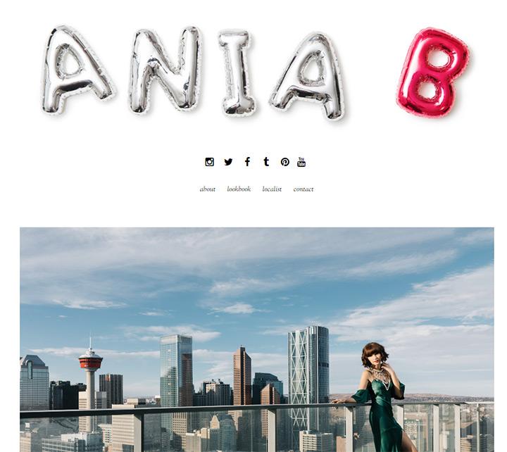 aniab blog