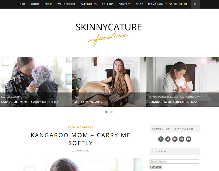 skinny cature blog