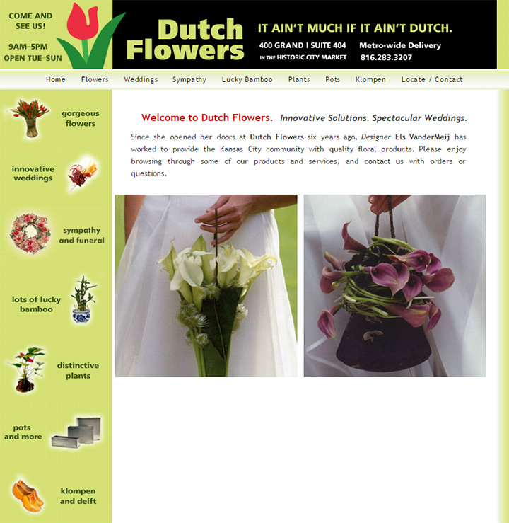 dutch flowers
