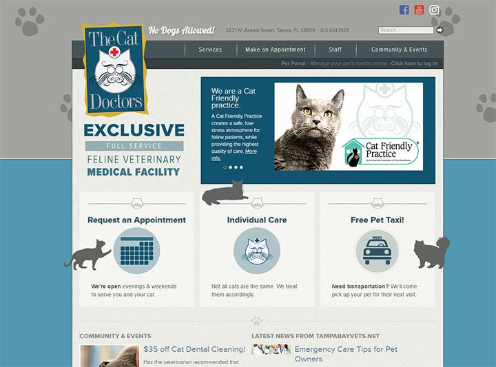 cat doctors